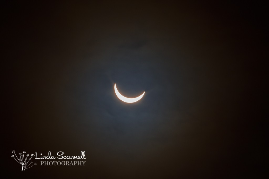 Solar Eclipse UK March 2015 | viewed from Warwick | Linda Scannell Photography