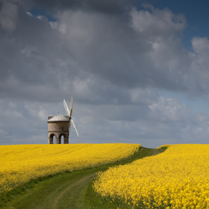Getting started with your digital camera | Chesterton Windmill photo