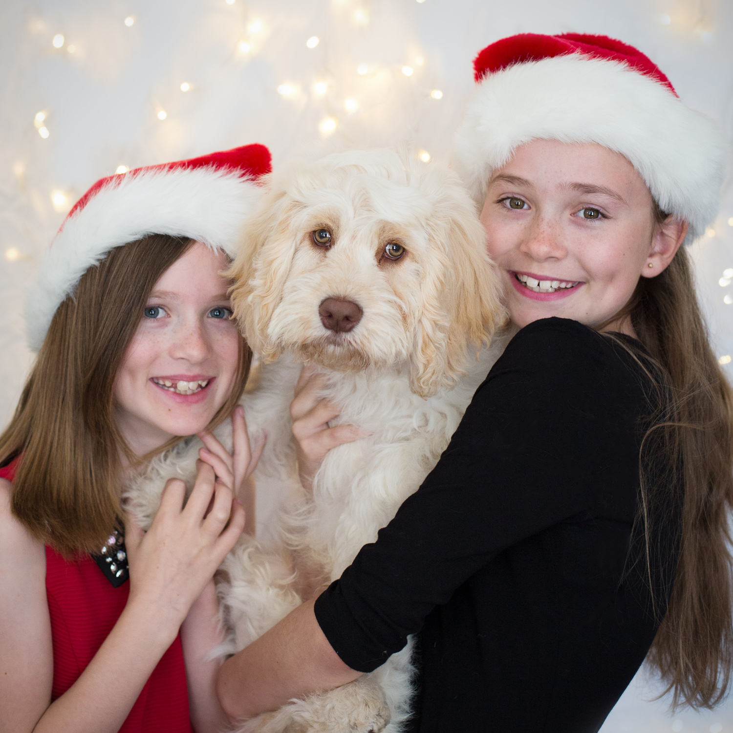 Christmas themed children and dog photo | Christmas opening hours at Linda Scannell Photography