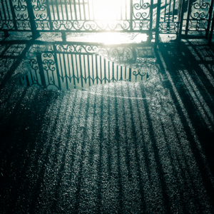 The Art of Photography course | Gates reflected in puddle