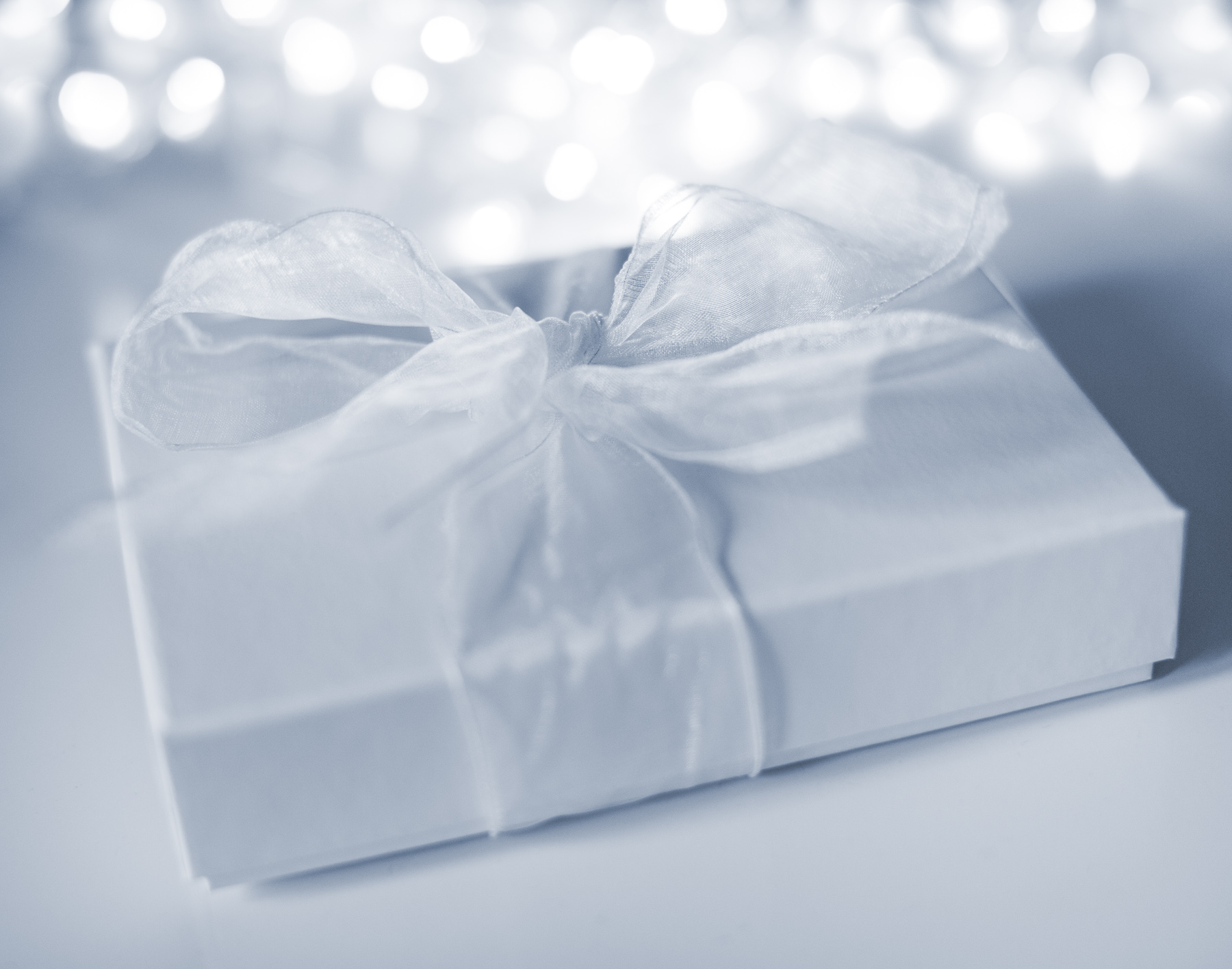 Family photography gift vouchers offer