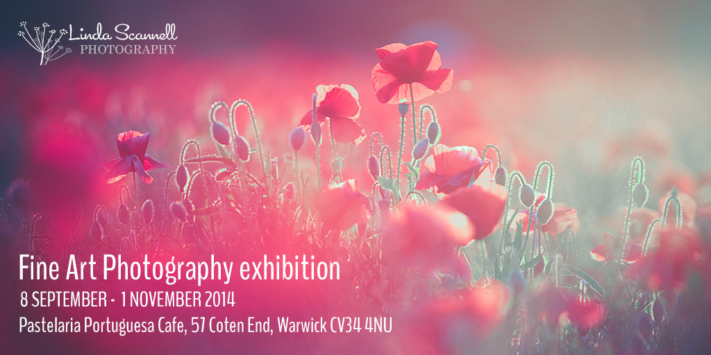 My new fine art photography exhibition in Warwick