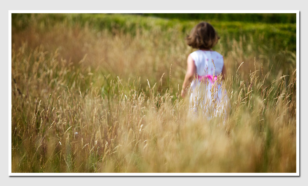 Fine-Art-Family-Photography-Girl-in-Summer-Field