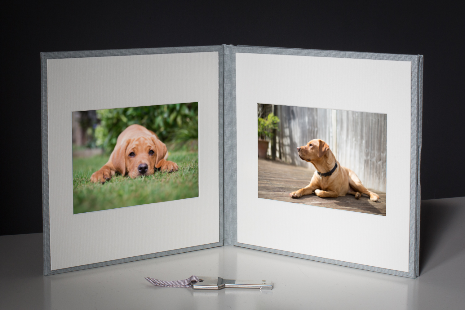 Digital photos on USB stick in a presentation folder | Linda Scannell Photography finished products